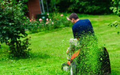 Steady Recurring Commercial Landscape Maintenance